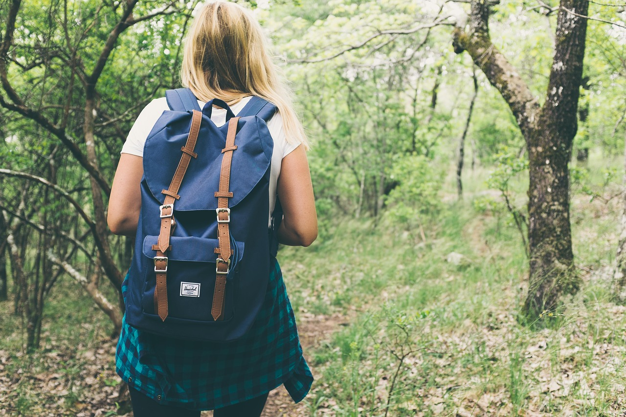 Ideas for a Good Hiking Backpack